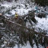 Hva er realitetene vedrørende strømutfallene på Sørlandet?