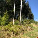 Driftstilskudd til hogst langs høyspentnettet